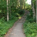 West Bluff Trail Rock Climbing